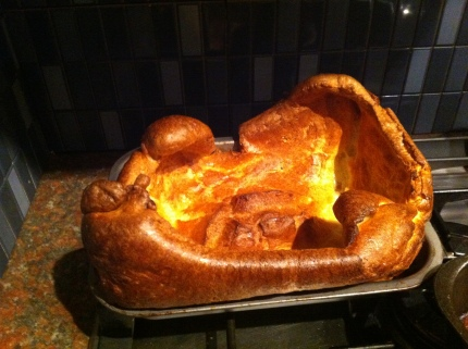 Yorkshire Pudding - not for cats!