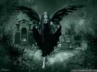 evil-faerie-www-crazy-frankenstein-com-i