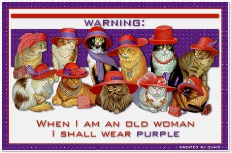 feline-wear-purple-with-red-hat